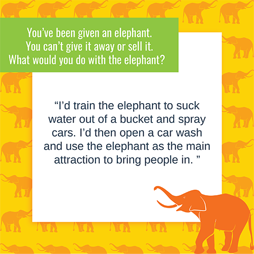 elephant quote from Mike Scott